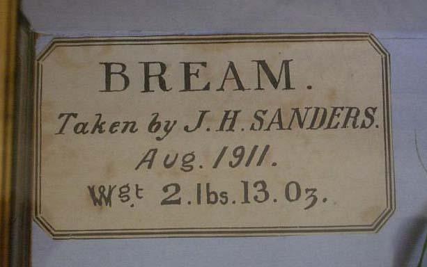 Bream20label[1].jpg